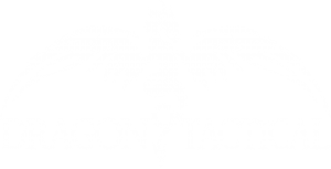 Dragon Tactical International